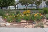 Oasis Garden (2620)