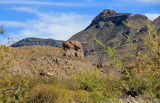 at-the-trail-to-Ranchs-hou.jpg