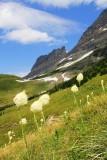 glacial_national_park_montana