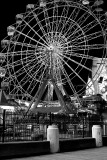 Carousel By Night.