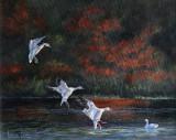 Douceur d'automne - Huile 11 x 14