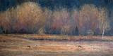 Quiétude à Cap Tourmente - Huile 18 x36 - Collection particulière