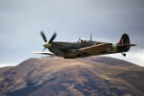 Spitfire at Warbirds