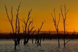 Nuga Nuga Sunset