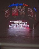 Detroit Red Wings at Phoenix Coyotes: December 12, 2008