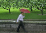 Rain in Beijing, China, 2009