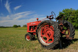 Old and Weathered Farmall Tractor