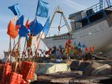 flags, Essaouira