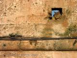 cat in the wall, Essaouira