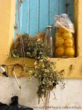 preserved apricots, Essaouira