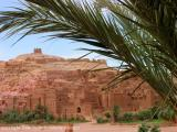 ait ben haddou kasbah with palm