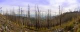 Mt-Lemmon-pano.jpg