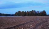 La Loire un matin d'automne