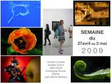Semainier