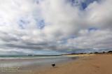 Beach of Apollo Bay