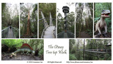 Otway Fly Tree Top Walk