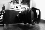 M8 & Summilux-M 35 F1.4