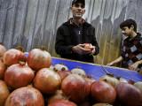 Pomegranate Vendor #13049