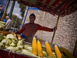 Corn Vendor #13030
