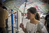 Umbrella #6173