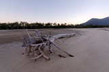 Inlet with dead tree (_DSC0110)