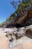 Rocks and pandanus (DSC4318)