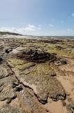 Rocky shoreline, Captain Billy Landing (DSC4371)