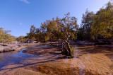 Archer River (DSC5083)