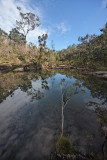 Swimming hole with reflections IMG_0904