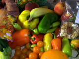 Shopping the Farmer's Market