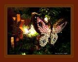 Crismons on the Christmas Tree.
