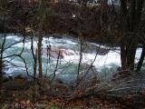 004 West Virginia River.JPG