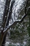 Winter has Arrived in Kentuckiana (USA)