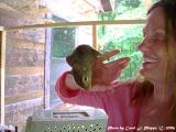 Penny Rescued Squirrel.JPG