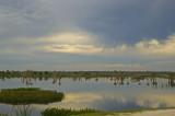 Viera  storm clouds