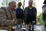 chess budapest hungary.jpg