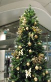 Christmas Tree at Stockmann's