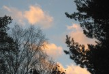Rosy Clouds