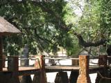 Mfue Lodge