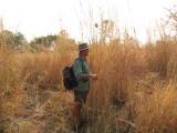 Dean on a morning walking safari