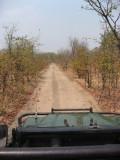 TseTse road