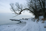 Winter by the sea / Vinter ved kysten