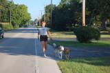 running dogs.JPG