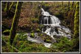 Shotgun creek & water fall