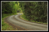 Forest Service Road 1790