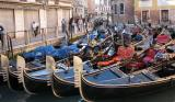 Venice 363.jpg