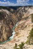 Grand Canyon-Yellowstone