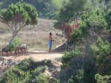 Cala Saona 2009