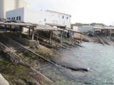 Es Calo 2010