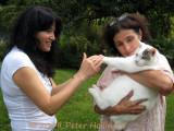 Rabbit Kitty Ching